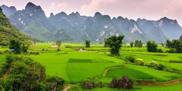 Viết bài chuẩn seo Cao Bằng, viết bài PR chuyên nghiệp tại tỉnh Cao Bằng